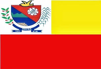 Image result for bandeira de saloá