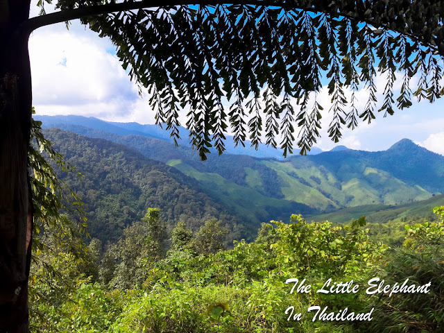 Doi Phu Kha National Park in Nan - Thailand