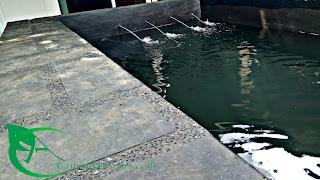 jasa pembuatan kolam bogor