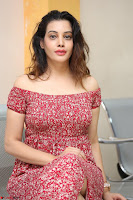 Diksha Panth in a Deep neck Short dress at Maya Mall pre release function ~ Celebrities Exclusive Galleries 113.JPG