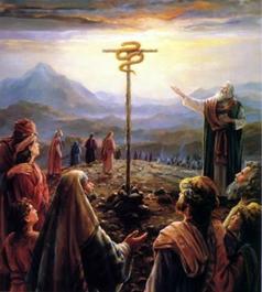 改变,常改变: 民数记21章-旷野漂流40年13 之迦南人攻击以色列人,铜蛇,亚摩利之战
