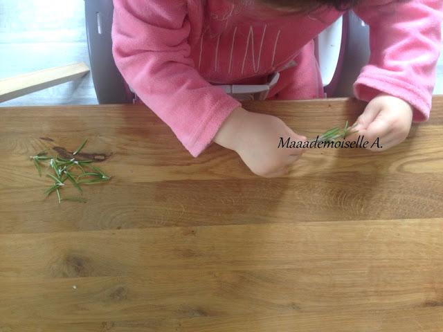 || Activité autour des cartes de nomenclature : Les herbes aromatiques