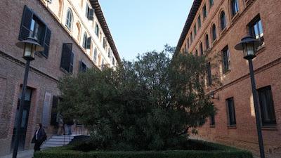 Jardín de la Residencia de Estudiantes