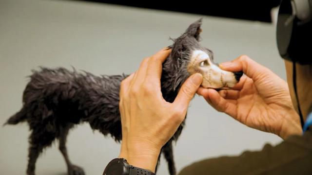 Manipulando un perro para utilizar la técnica de stop motion en la película Isla de Perros de Wes Anderson