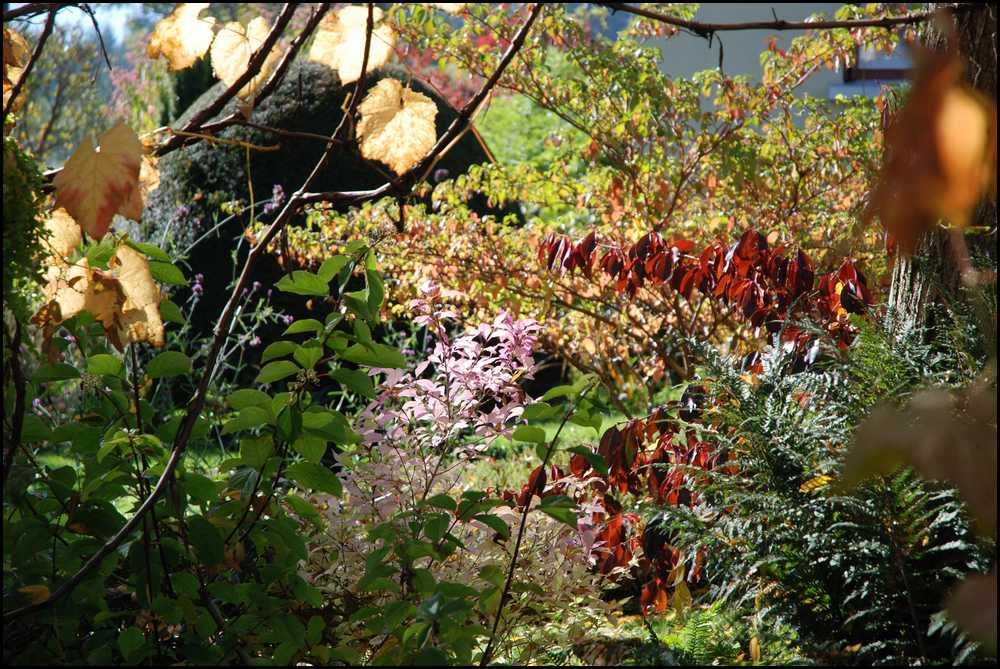Le jardin du mayet en ce magnifique week end d 39 automne for Jardin ouvert ce week end