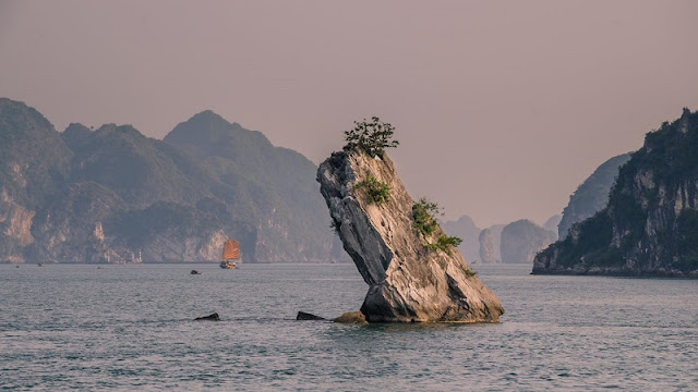 Experience the most attractive tourist on Halong Bay 5
