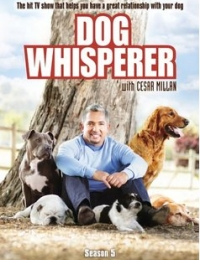 Dog Whisperer with Cesar Millan 2 | Watch Movies Online