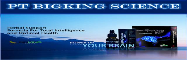 http://www.brain-king-plus.com/ 0812301 8900