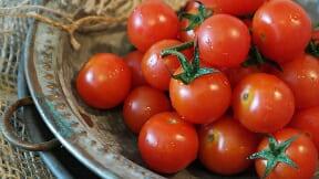 13 Keajaiban Tomat Untuk Kesehatan Jantung, Diabetes Dan Mencegah Kanker