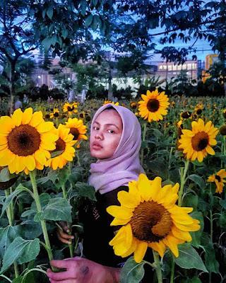 Bunga Matahari Sky Garden PVJ Bandung