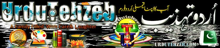 Urdu Tehzeb