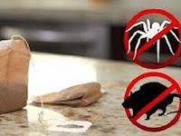 Cara Mengusir Tikus Dengan Kantung Teh