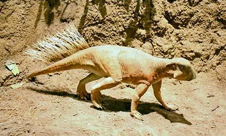 Psittacosaurus: Daripada 4 kaki kepada 2 kaki