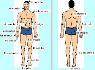 ee823a5a0c56 El cuerpo guarda todos los acontecimientos traumáticos