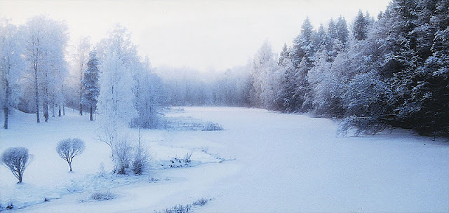Finland Winter Destination