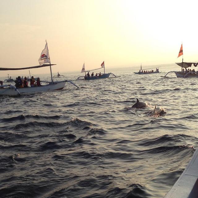 foto suasana melihat lumba lumba di pantai lovina