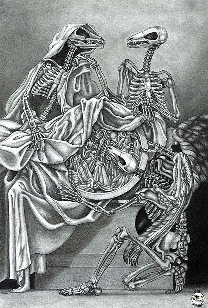 Ilustración, Sauromorpha de Alberto Fuentes aka Al Rex