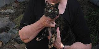 Tiffany Two il gatto più vecchio che c'è