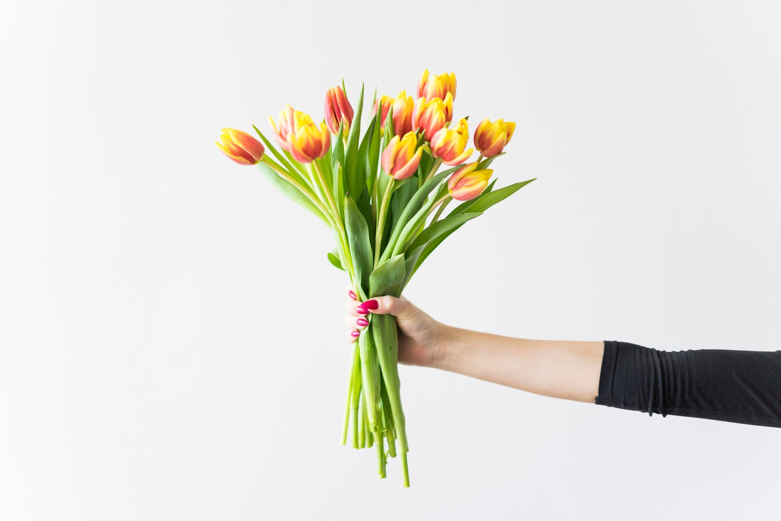 urodziny, birthday, birthday girl, flowers, birthday flowers, tulips, 26 thought on 26th birthday, 26 myśli na 26 urodziny