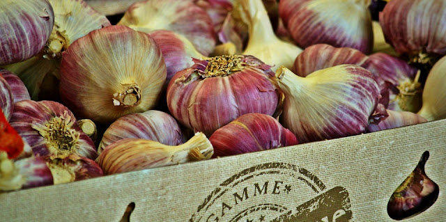Usturoiul - cultivare, beneficii și proprietăți, garlic