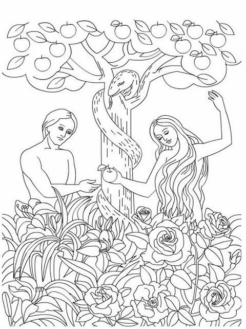 El Renuevo De Jehova: Adan y Eva - Imagenes para colorear cristianas ...