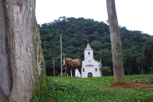 Cavalo em Visconde de Mauá, foto de Marcelo Migliaccio