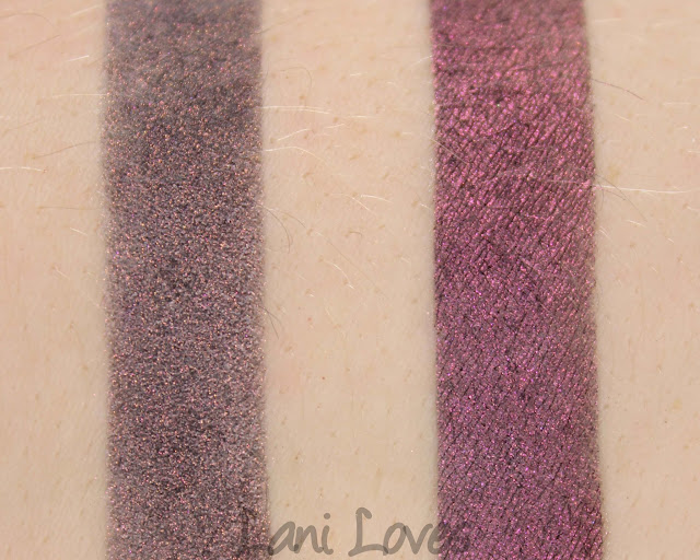 Notoriously Morbid Misery Loves Company Eyeshadow Swatches & Review
