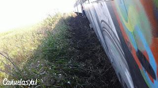 Descarriló un tren que se dirigía a Lobos