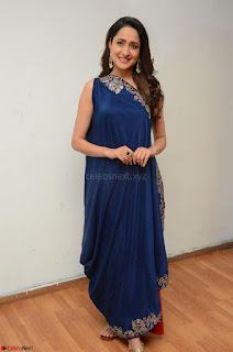 Pragya Jaiswal in beautiful Blue Gown Spicy Latest Pics February 2017 036.JPG