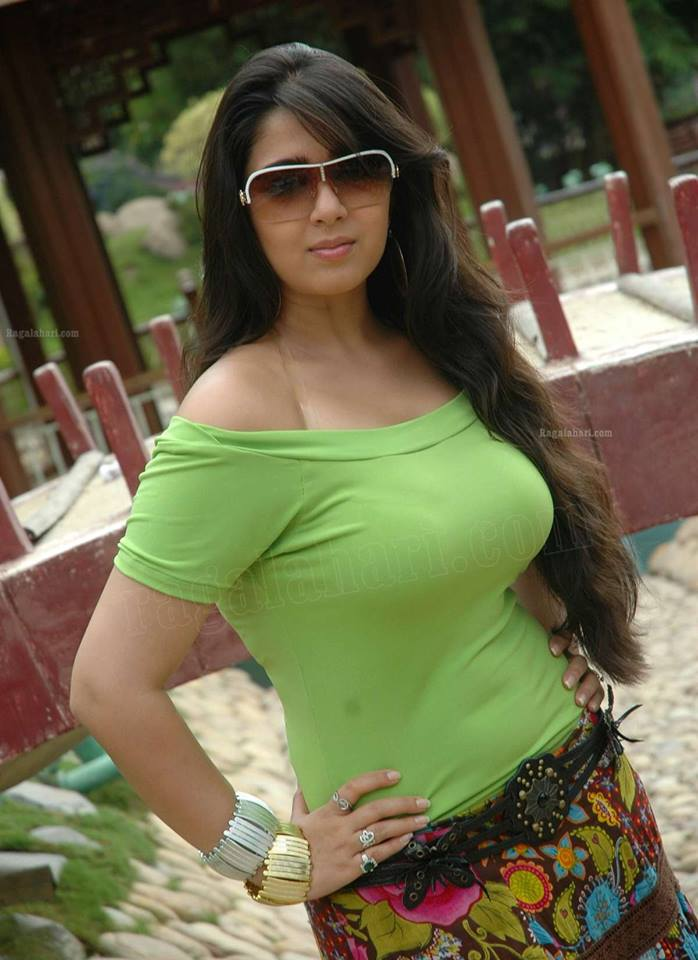 Pakistani Desi Girls Pictures  South Indian Actresses Pics-5175