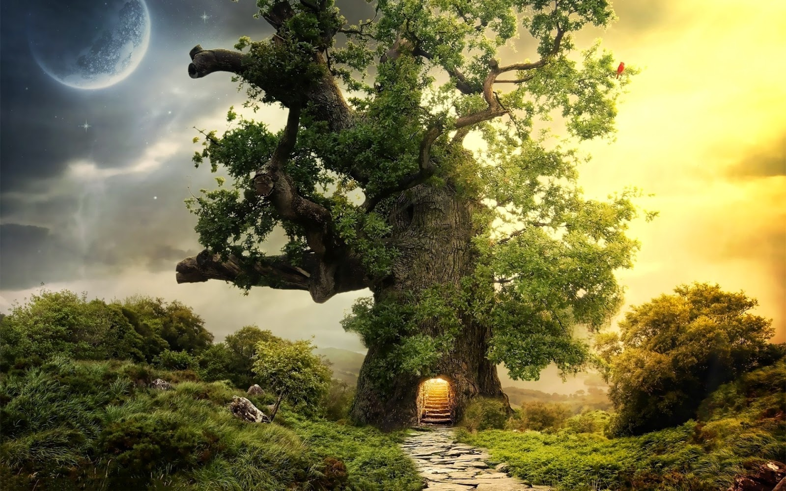 fantasy-house-tree-designs-real-world-1920x1200.jpg