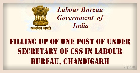 CSS-LABOUR-BUREAU-INDIA-CHANDIGARH