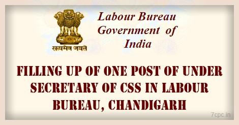 CSS-LABOUR-BUREAU-INDIA-CHANDIGARH