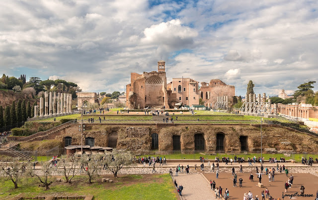 forum romain, colysée, italie, italy, italia, Rome