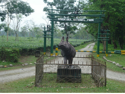 Gorumara National Park, Dooars