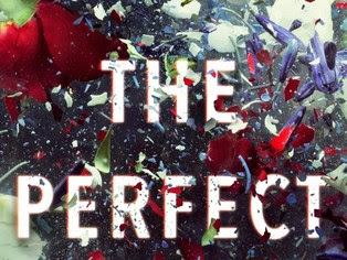 [NEW UPDATE] The Perfect Mother by Aimee Molloy