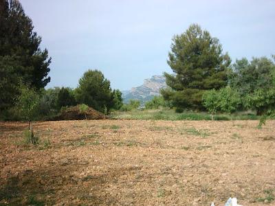 La pileta, camino, pantano de Pena, embalse, finca, almendros, olivos 35