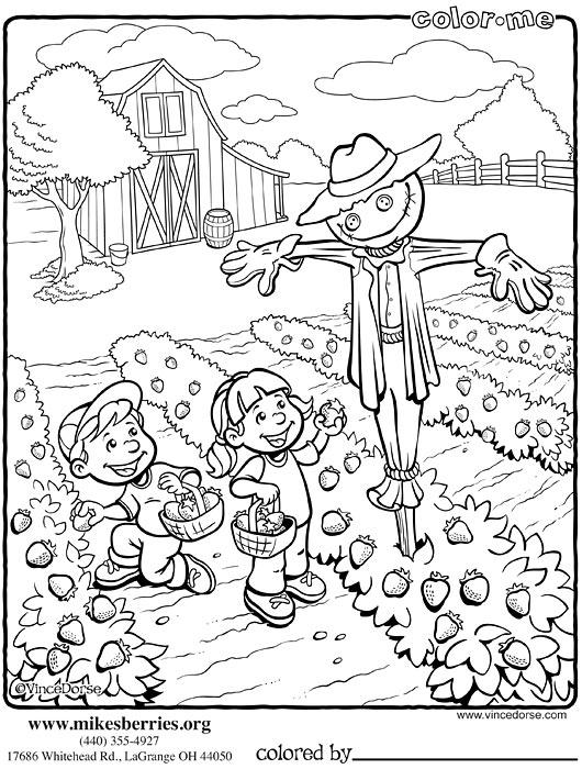 vegetable garden coloring pages | Vince Dorse Art Blog: June 2012