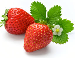 Image result for strawberi