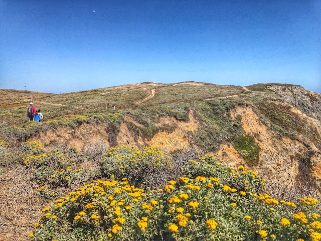 Hiking Bodega Bay trail