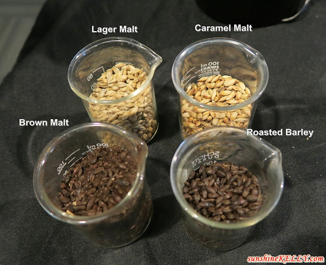 lager malt, caramel malt, brown malt and roasted barley