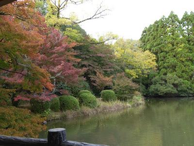 【京都府】京都府立植物園 池