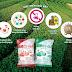 Sakuko HD Việt Nam - Phân bón sạch là gì? Làm thế nào để bón phân hiệu quả?