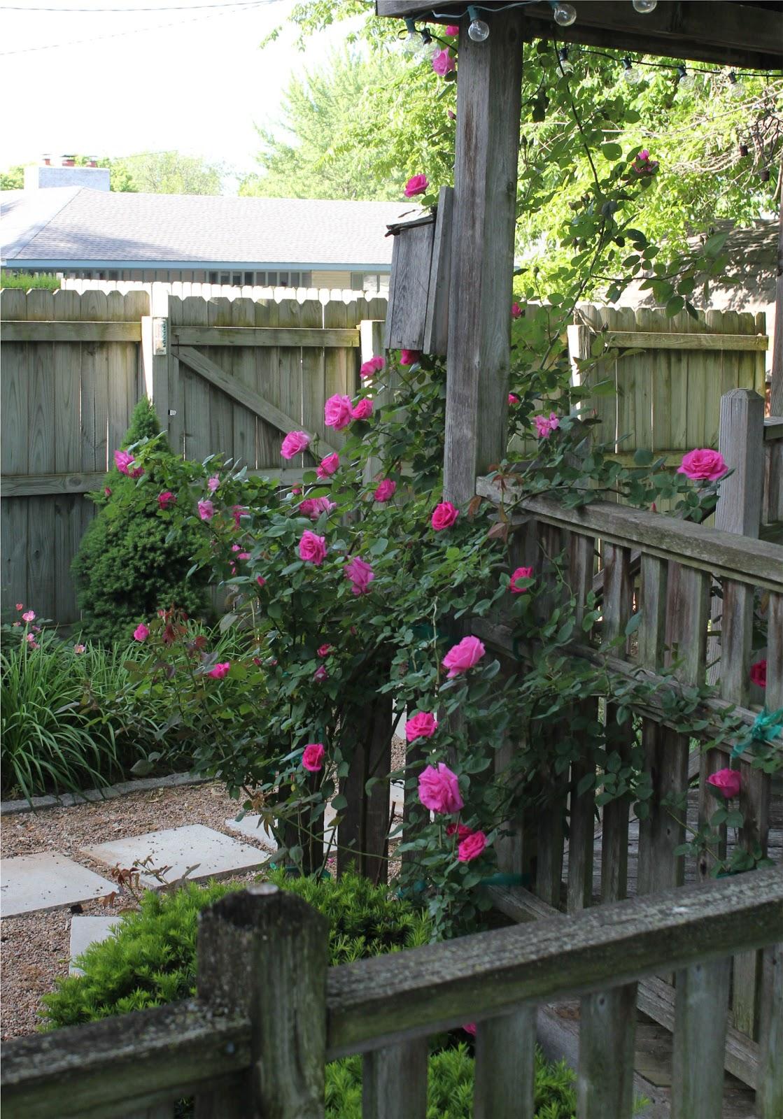 My Secret Garden: Catherine Holman Folk Art: My Secret Garden