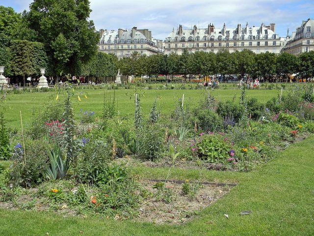 Luwr i okolice, Paryż