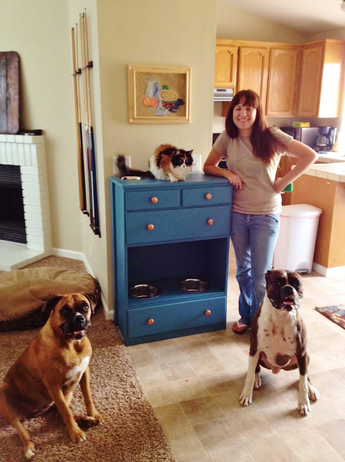 Crafty Wife Crafty Life Diy Pet Feeding Station