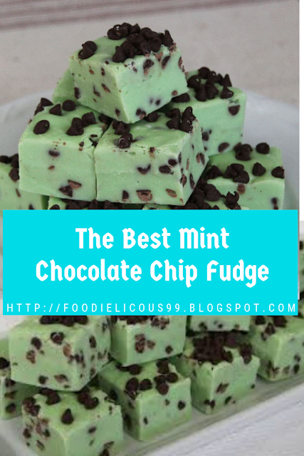 The Best Mint Chocolate Chip Fudge