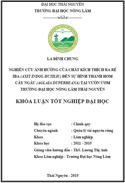 Nghiên cứu ảnh hưởng của chất kích thích ra rễ IBA (Axit Indol-butilic) đến sự hình thành hom cây Ngâu (Aglaia duperreana) tại vườn ươm trường Đại học Nông Lâm Thái Nguyên