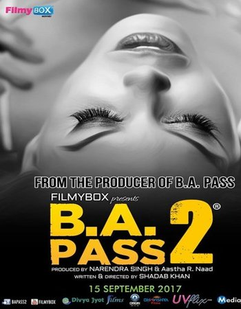B.A. Pass 2 (2017) Hindi 720p HDRip