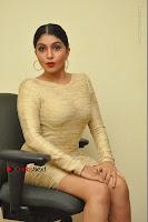 Actress Pooja Roshan Stills in Golden Short Dress at Box Movie Audio Launch  0101.JPG